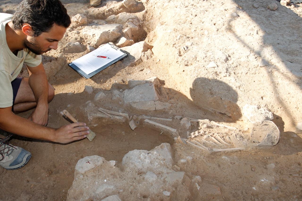 El hallazgo de un nuevo esqueleto infantil en la Villa Romana del Albir confirma la existencia de una necrópolis