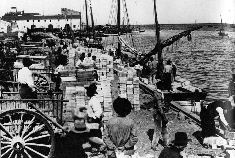 Dénia se desvincula de la comarca y no participa en la «Ruta dels riuraus» pese a que su puerto exportó la «pansa» al mundo