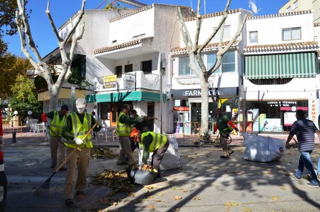 Xàbia poda los plataneros de la avenida Fontana tras las quejas vecinales
