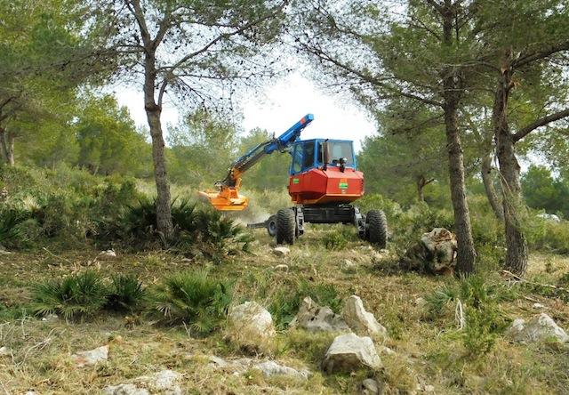Asegurar los cincuenta metros de cortafuego para evitar incendios en la Granadella