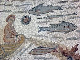 erizo mosaico