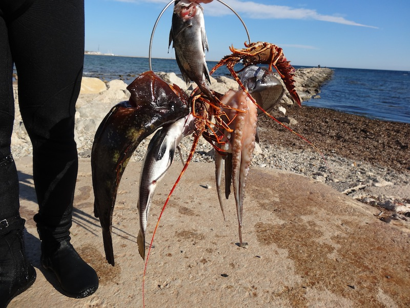 Batalla contra los «chapapotes» y la caza furtiva en la reserva marina de Sant Antoni