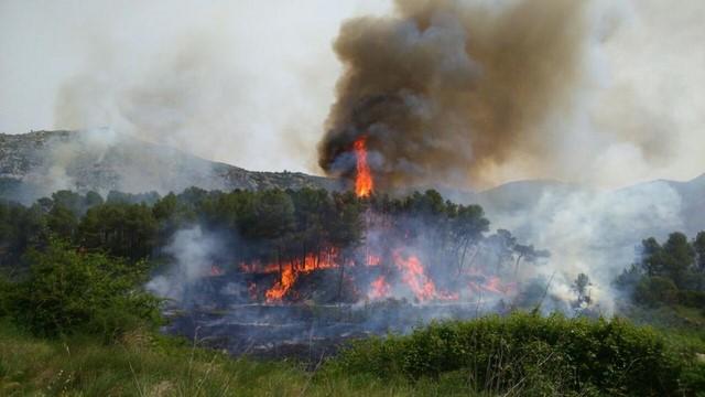 El Gobierno envía a la UME al incendio de la Vall d'Ebo y desalojan en Pego los primeros chalés por humo