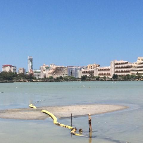 """Calp inyecta """"a pleno pulmón"""" agua de mar en les Salines para intentar recuperar su nivel hídrico tras las denuncias de desecación de los ecologistas"""