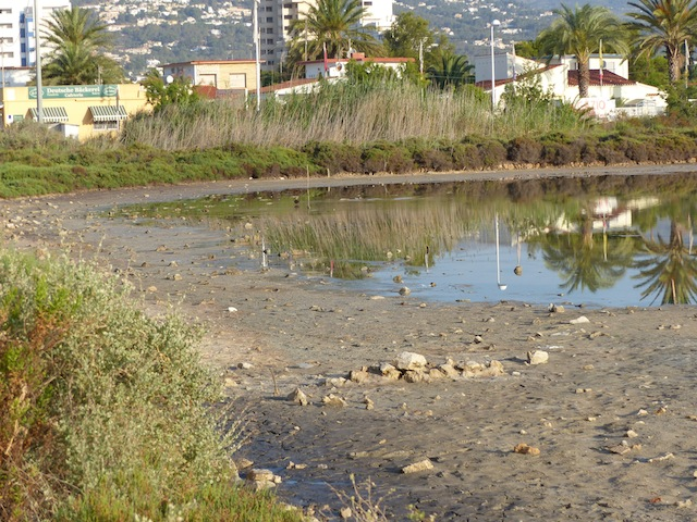 Les Salines prosiguen su deterioro implacable