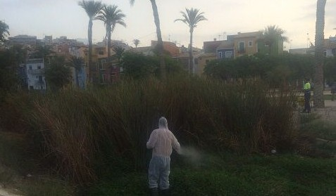 """La Vila fumiga """"de urgencia"""" los mosquitos del Amadorio mientras espera el permiso para limpiar el cauce"""