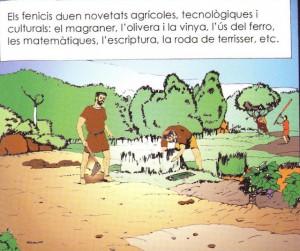 fenicis agricultura