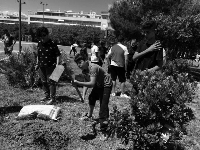 De árboles y futuro, actividades del programa de convivencia en el IES Maria Ibars de Dénia