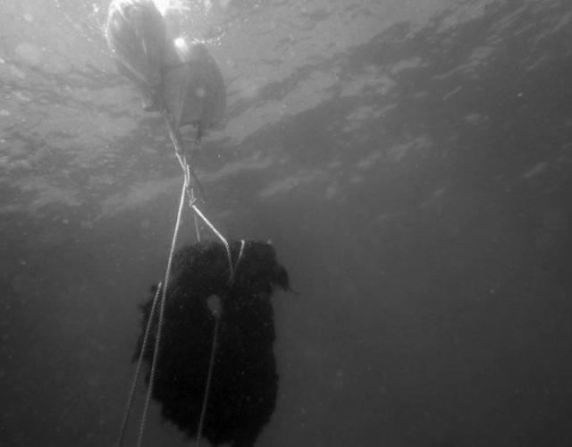 Rescatada en aguas de Xàbia un ancla de 1.500 años de antigüedad
