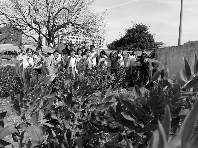 Entre letras y fogones… el colegio Pou de la Muntanyna «va de faves»