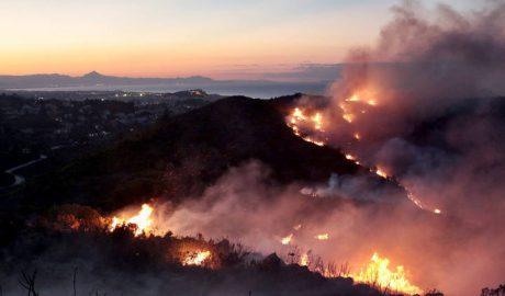 Mites sobre els incendis forestals