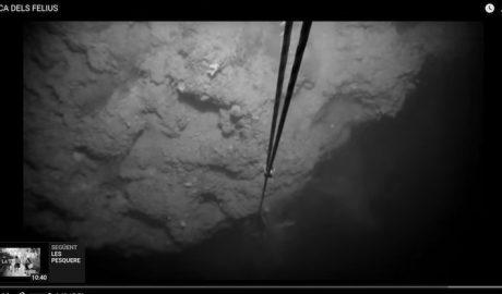[VÍDEO] Medidas para proteger la Roca dels Felius, un promontorio submarino frente a a la Nau amenazado por la pesca masiva