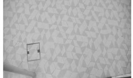 La Generalitat promociona l'Arenal de Xàbia con una webcam… que enfoca al suelo