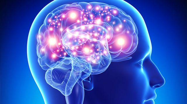 Resultado de imagen de La mente humana