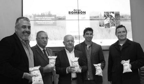 Pego prepara el lanzamiento comercial del arroz bombón triplicando la producción para 2017