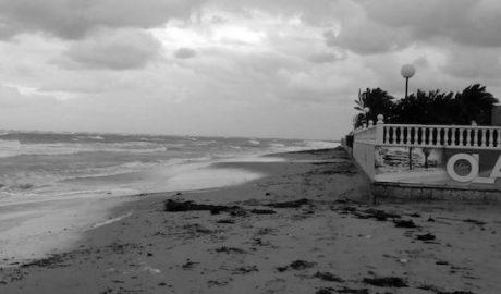 El mar cerca de nuevo el entorno de la futura urbanización en primera línea de Dénia