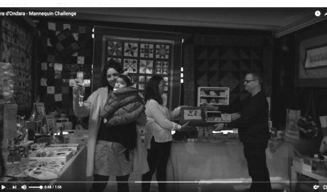 [VÍDEO] El espectacular Mannequin Challenge de la Fira de Ondara