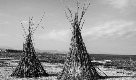 Dos mil metros cúbicos de cañas siguen 'inundando' la playa de l'Almadrava dels Poblets tres semanas después del temporal