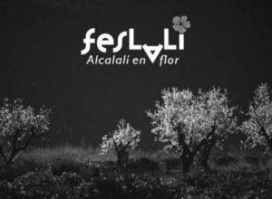 A la caza (fotográfica) del almendro en flor en Alcalalí