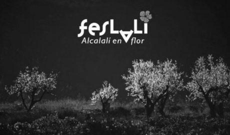 A la caça (fotogràfica) de l'ametler en flor a Alcalalí