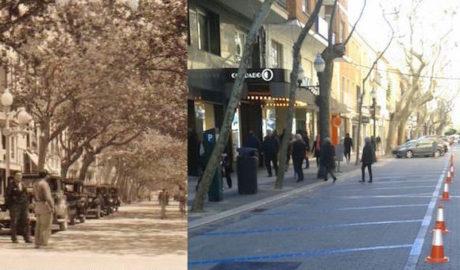 Marqués de Campo (ahora sí) se queda sin taxis después de décadas