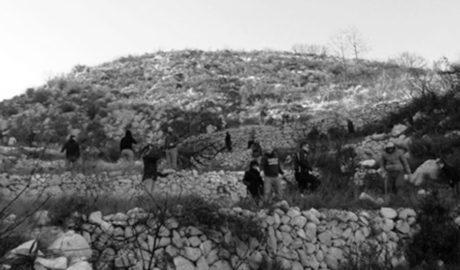 Unos 70 pegolinos se echan a la montaña a reforestar el suelo quemado en el incendio de 2015