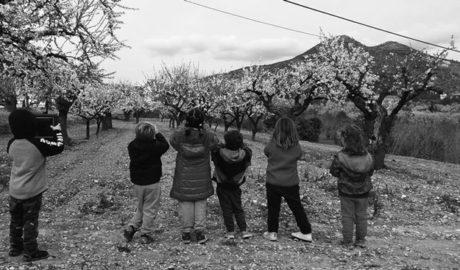 """La Feria de """"Productos de la Tierra y Oficios"""" protagoniza el último fin de semana de Feslalí"""