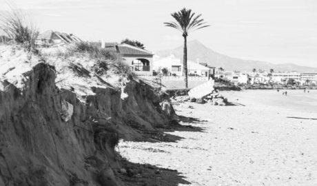 El temporal de enero dejó taludes de más de dos metros en las dunas protegidas de les Deveses en Dénia