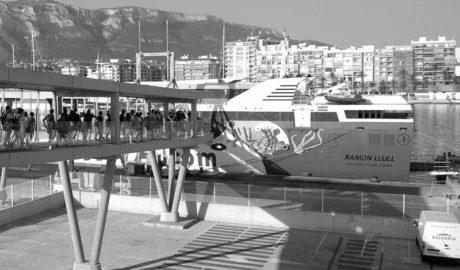 300 estudiantes de la Marina Alta avistan cetáceos y luchan contra el cambio climático