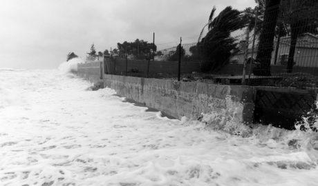 5.000 firmas contra la regresión costera y para evitar la urbanización prevista a pie de mar en Dénia