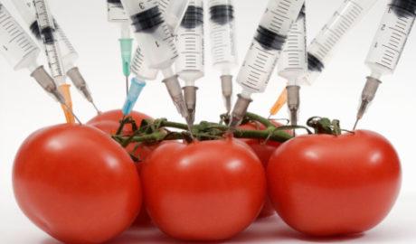 Insólitos ingredientes en alimentos de consumo cotidiano