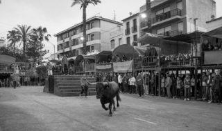 Benissa suspèn els actes de bous de les festes per la pluja