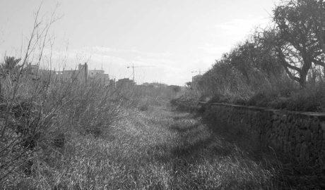 La reivindicación ferroviaria de la Marina y la Safor viaja hasta Alicante