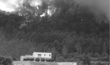 Un estudi aplaudeix la reacció social a Pego i les Valls dos anys després de l'incendi