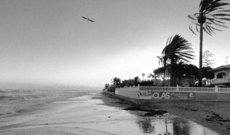 Dénia rechaza por segunda vez el proyecto para construir apartamentos en primera línea del Blay Beach