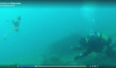[VÍDEO] Kilos de plomo y centenares de hilos de pesca amenazan la vida marina de Xàbia