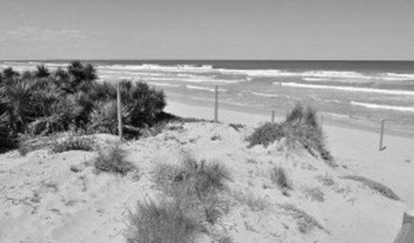 Todos los partidos de Dénia piden al Consell que proteja los tramos vírgenes del litoral y el Cementerio de los Ingleses