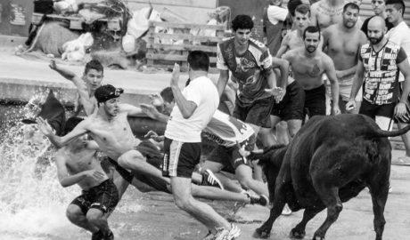 Controversia por la convocatoria de una nueva concentración contra los Bous a la Mar en la Festa de Dénia