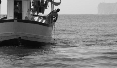 [Fotogalería] Un día de pesca en Dénia como reclamo turístico