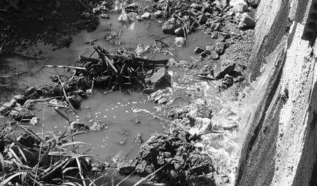 Los vecinos de Monte Pego consiguen detener el vertido de aguas contaminadas al Marjal