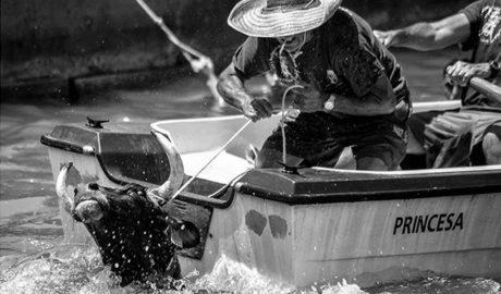 El dianense Jaime Mezquida, nominado a Mejor Fotógrafo Español del Año por una instantánea de los Bous a la Mar
