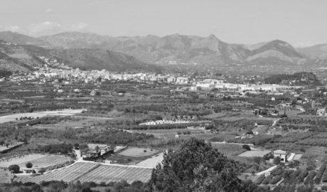 Pedreguer impulsa un plan para reactivar la agricultura como actividad sostenible y mantenedora del paisaje