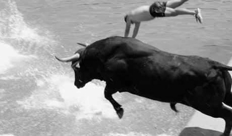 """Marta Amat, etóloga: """"Está claro que los animales pueden sufrir en los Bous a la Mar"""""""