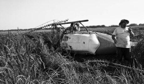 Un helicóptero se estrella en el Marjal de Pego cuando fumigaba los arrozales