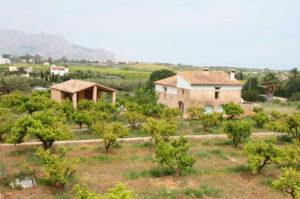 Visita guiada a L'Hort de l'Alé con Josep A. Gisbert, arqueólogo -Dénia- @ Punto de encuentro: l'Hort de l'Alé. Entrada urbanització la Sella. Pedreguer