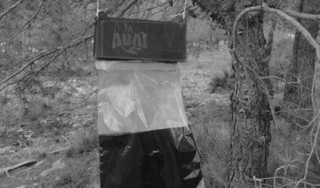 La Associació Benissera Anti-incendis combate la procesionaria del pino con trampas de feromonas