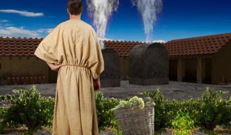 Recreaciones virtuales del yacimiento de l'Almadrava permiten regresar a la Dianium romana