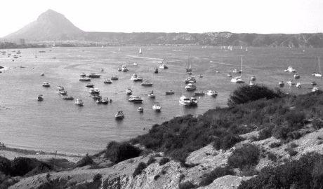 Ministero y Generalitat ponen en marcha un plan para proteger la posidonia en Xàbia