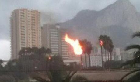 Un llamp crema quatre palmeres a Calp i cauen arbres a Dénia i Pego per la tempesta