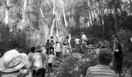 El plaguicida más natural está en el Montgó y el Marjal